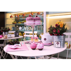 coppette gelato pink collection